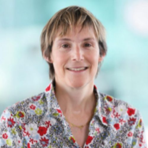 Welcome to the New Board Member – Catherine Janssens